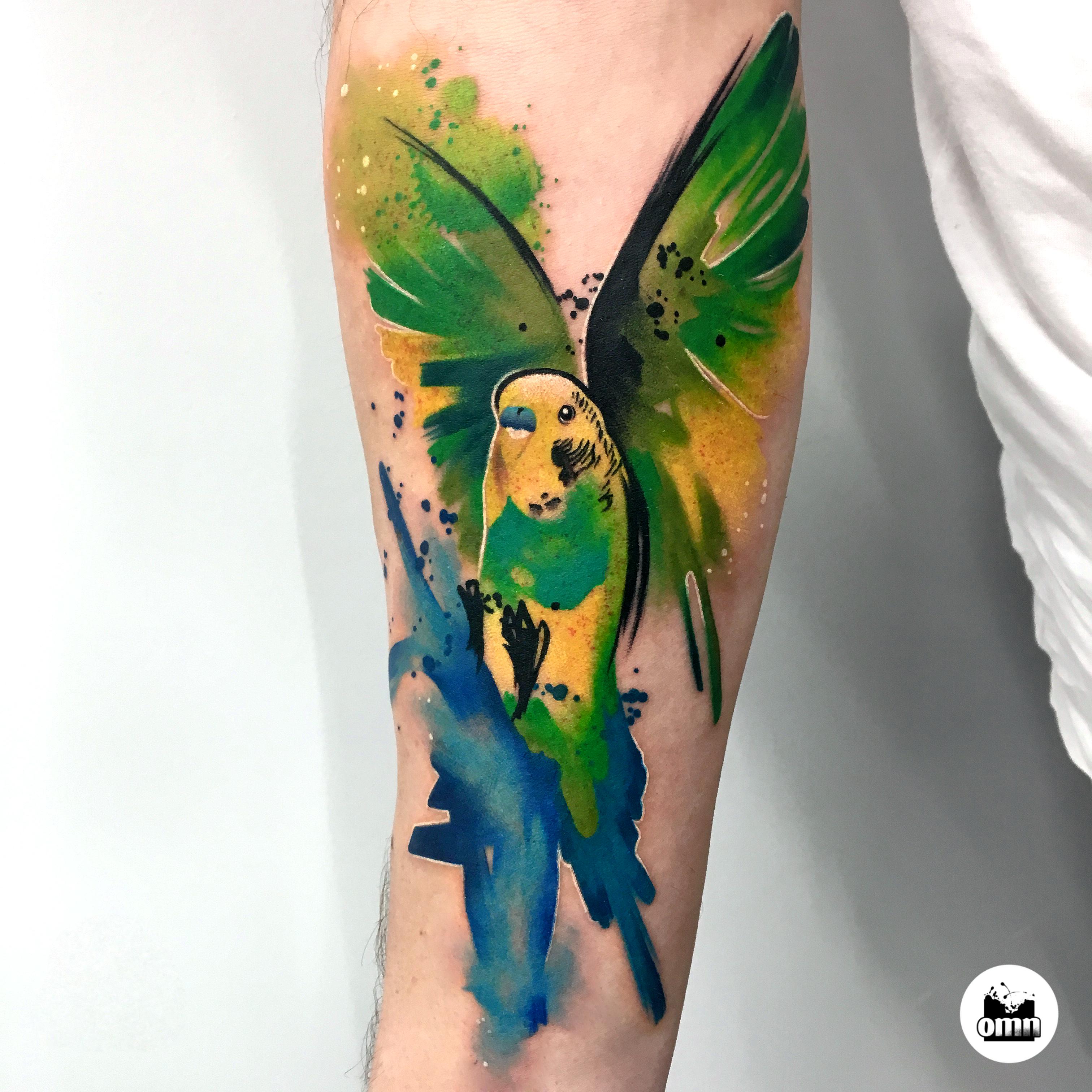 Portrety zwierząt Łódź - tatuaż akwarelowy papugi falistej